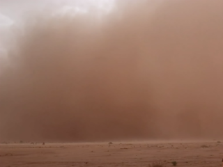 A person running from a surface dust storm in M´Hamid, Morocco (September 2019)